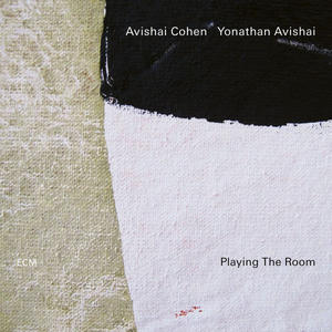 Cover of vinyl record PLAYING THE ROOM by artist