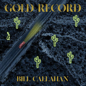 Cover of vinyl record GOLD RECORD by artist
