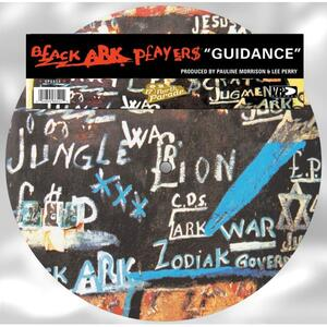 Cover of vinyl record GUIDANCE (PICTURE DISC) by artist