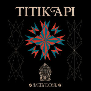 Cover of vinyl record TITIK API by artist