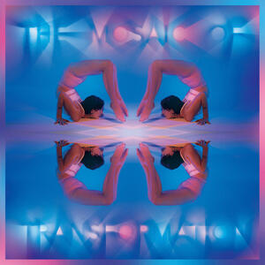 Cover of vinyl record THE MOSAIC OF TRANSFORMATION by artist