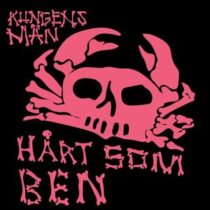 Cover of vinyl record HART SOM BEN by artist