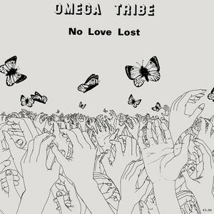 Cover of vinyl record NO LOVE LOST by artist
