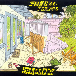 Cover of vinyl record SHALLOW  by artist