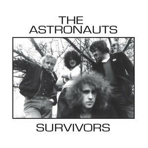 Cover of vinyl record SURVIVORS by artist