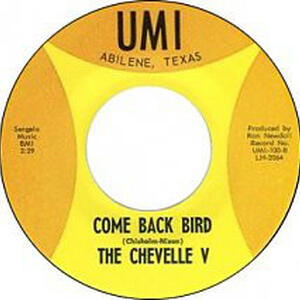 Cover of vinyl record I'M SORRY GIRL / COME BACK BIRD by artist