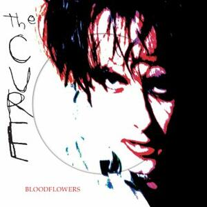 Cover of vinyl record BLOODFLOWERS - (PICTURE DISC) by artist