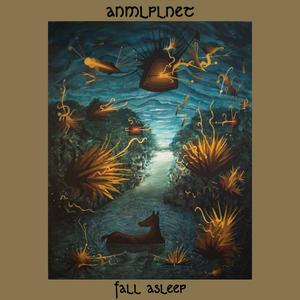 Cover of vinyl record FALL ASLEEP by artist