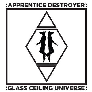 Cover of vinyl record GLASS CEILING UNIVERSE by artist