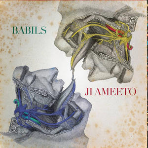 Cover of vinyl record JI AMEETO by artist
