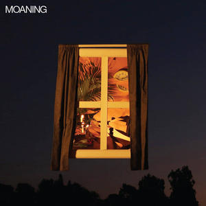 Cover of vinyl record MOANING by artist