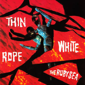 Cover of vinyl record the RUBY SEA by artist